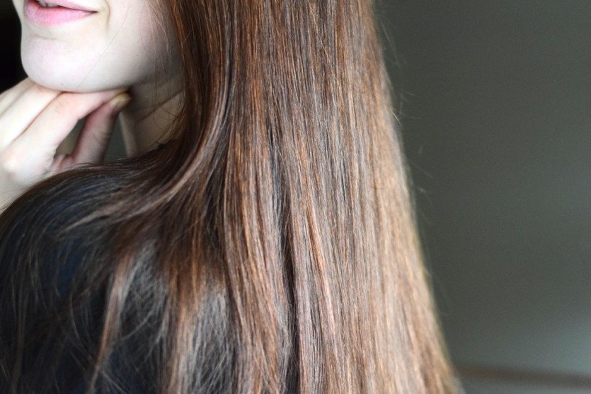 Glatte Haare mit dem Revlon Perfectionist 2in1 Dryer